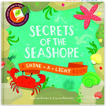 Kids and parents love these interactive Usborne Shine A light books. What child doesn't love a flashlight. These fun books make great gifts for birthdays or during the holidays.